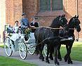 Hochzeit in Nortorf: